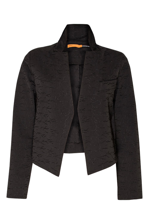 Black Embroidered High Collar Classic Jacket 5208