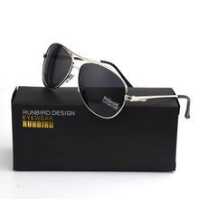 Polarized Aviators - Gold Coast Shop