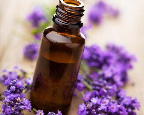 Lavender oil for hair care