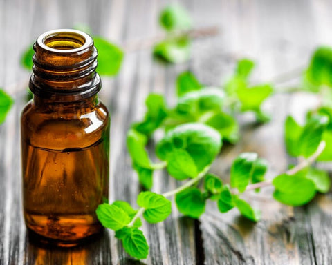 Peppermint oil for hair care
