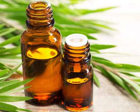 Rosemary oil for hair care