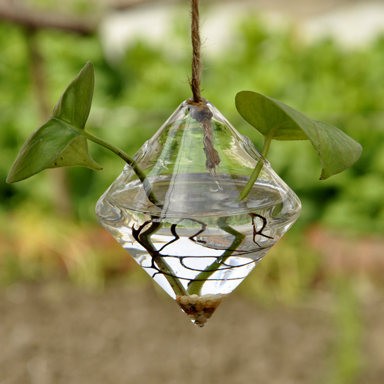 Clear Glass Rhombus Shaped Hanging Vase - The MOJO