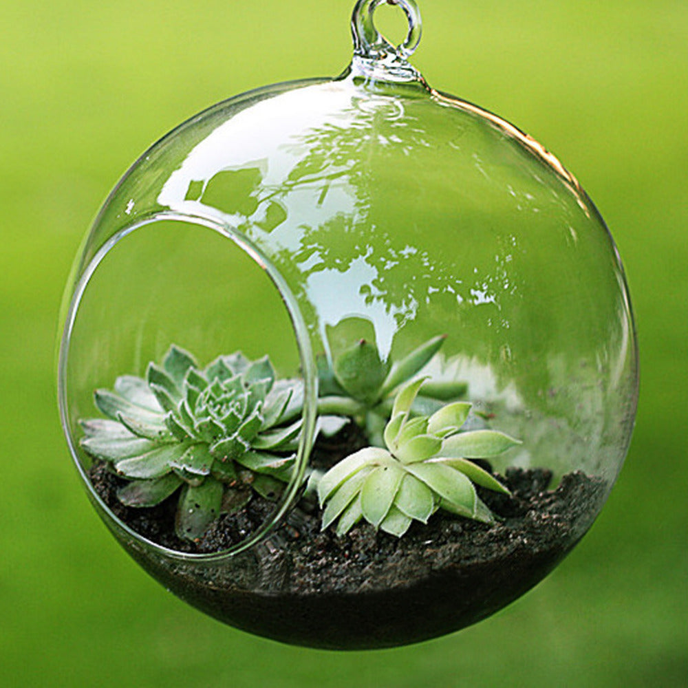 Clear Glass Round Shaped Hanging Vase - The MOJO