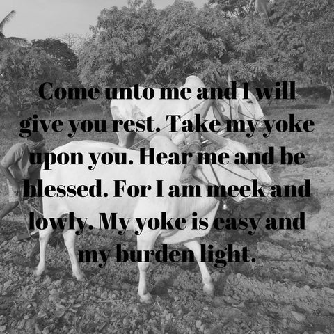 my yoke is easy and my burden is light
