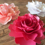Flowers & Plants - Shimmer Paper Peonies