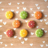 Magnets - Citrus Fridge Magnets