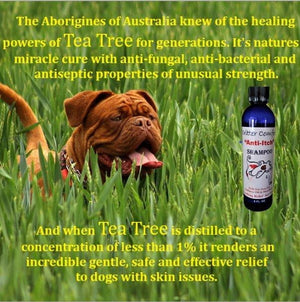 Dog Shampoo for Dry Itchy Skin, Critter Comfort - Critter Concepts