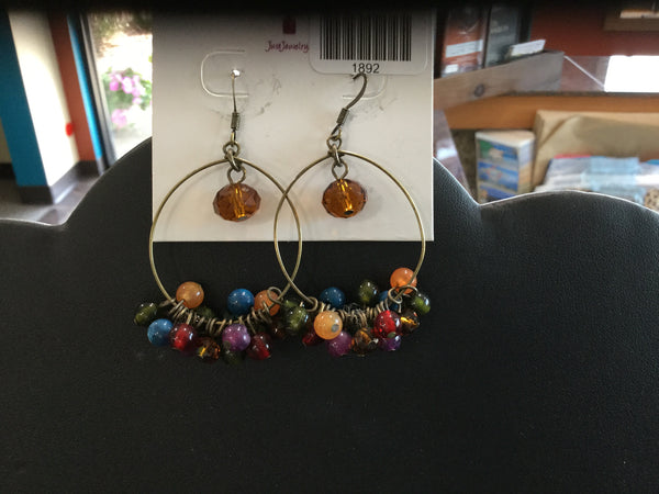 Multi colored beaded earrings