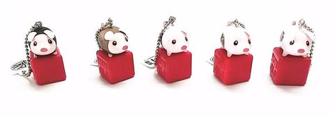 5 Poogie Key-chains