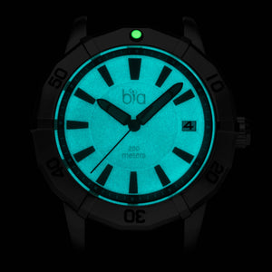 Bia 'Rosie' Dive Watch B2001