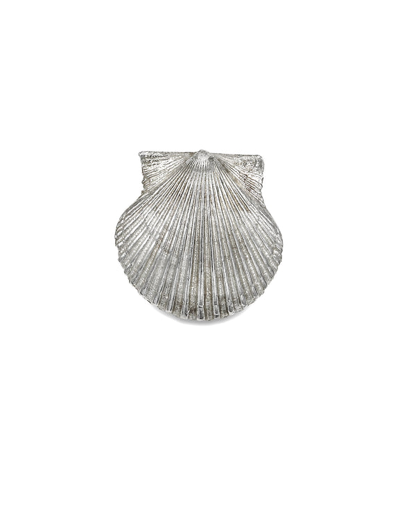 Delicate Bay Scallop Necklace