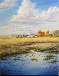 Prairie Skyline Stretched Canvas by Dan Reid
