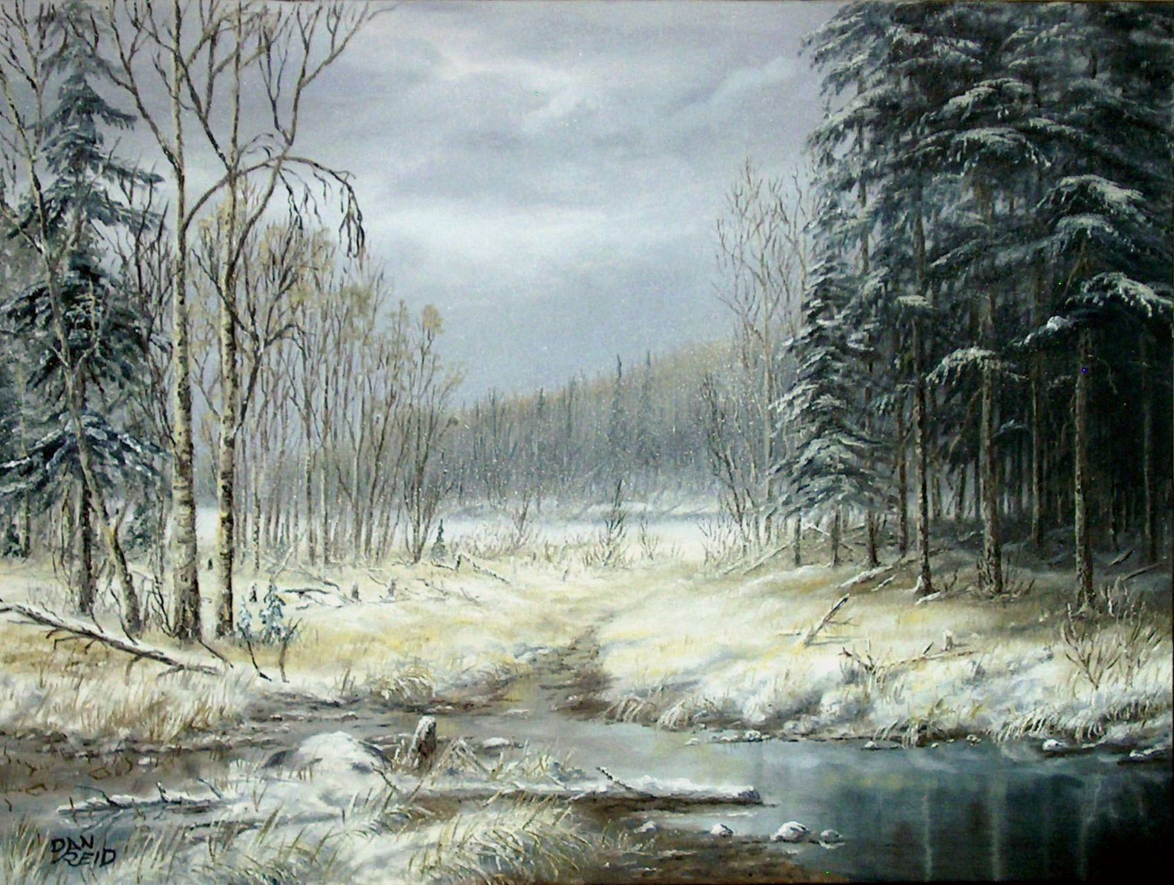 Winter Woods Stretched Canvas by Dan Reid