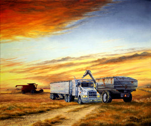 Harvest Sunset Stretched Canvas by Dan Reid