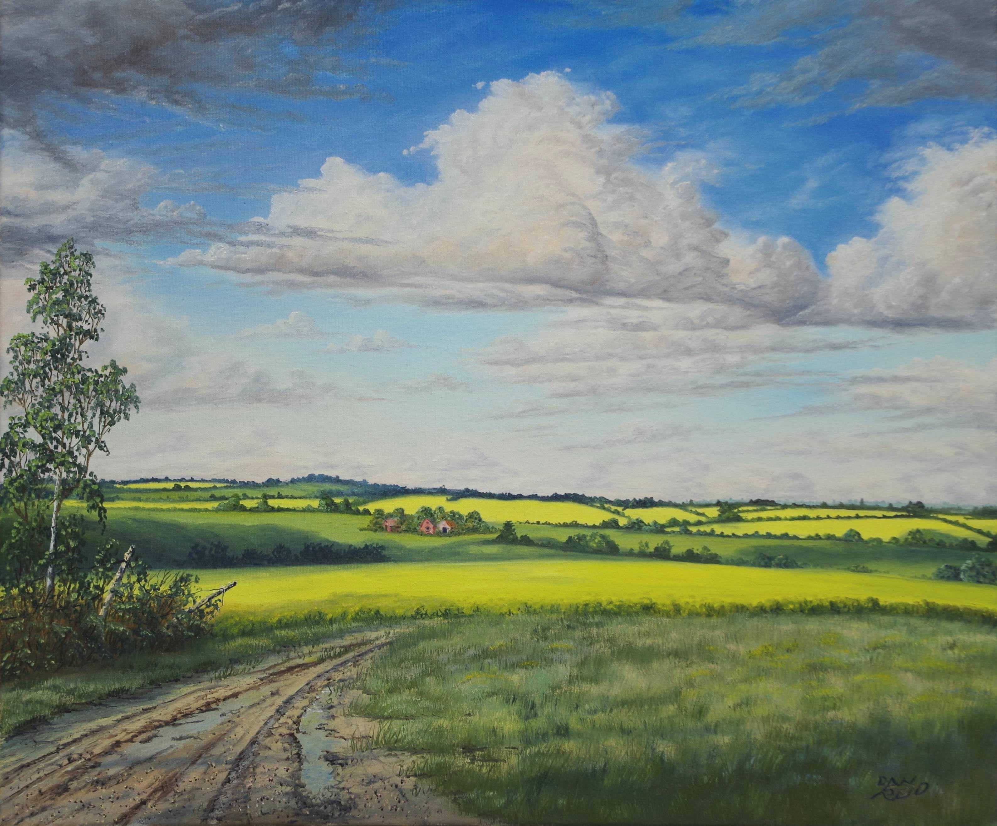 Canola Stretched Canvas by Dan Reid