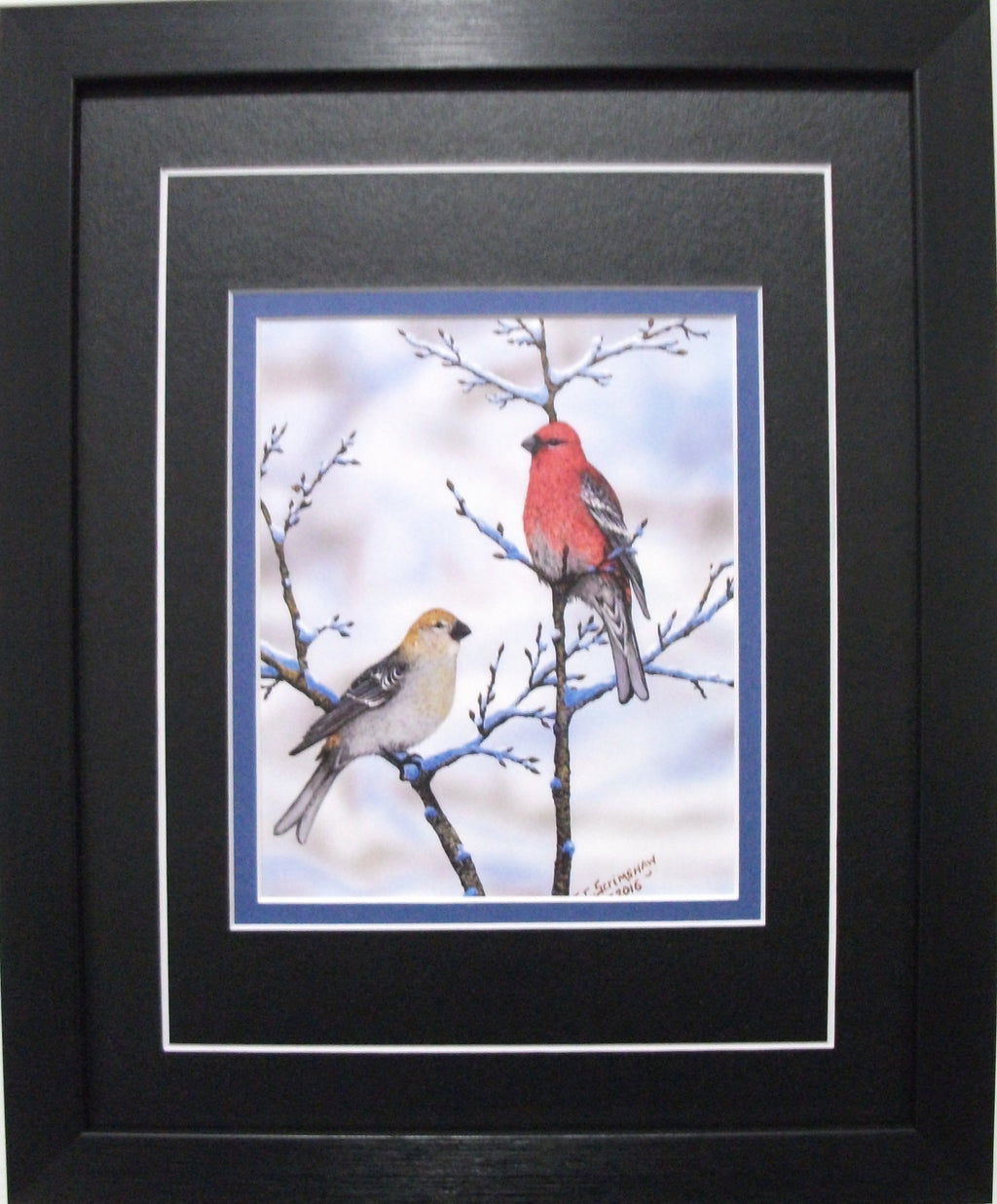 Grosbeaks by Glen Scrimshaw
