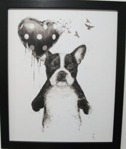 "Boston Terrier "" My Heart Goes Boom"""