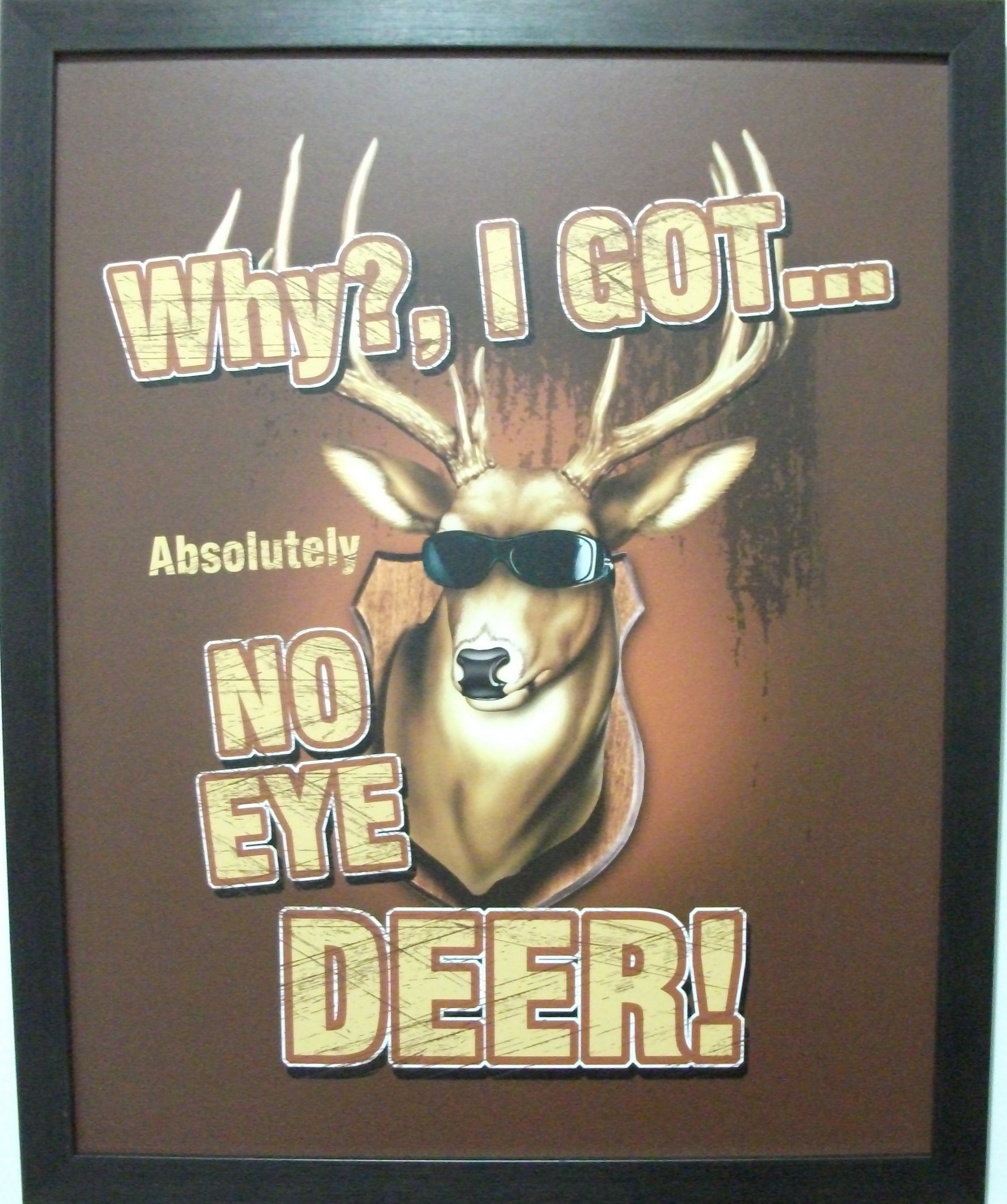 Why I Got Absolutely No Eye Deer