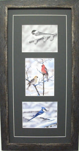 Winter Bird Vertical Trio