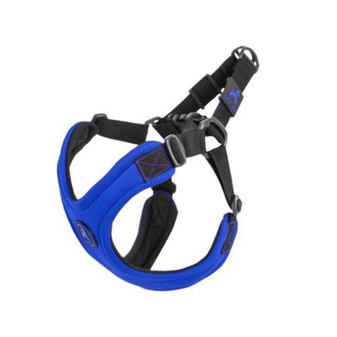 M/F Harness RB