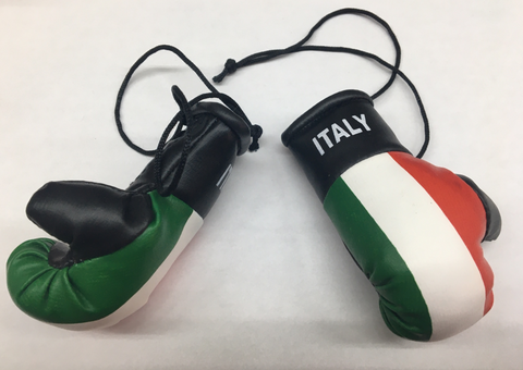 Mini Italy Boxing Gloves