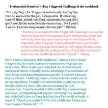 Triggered Book and Workbook | Mental Health Book | Inner Healing Workbook