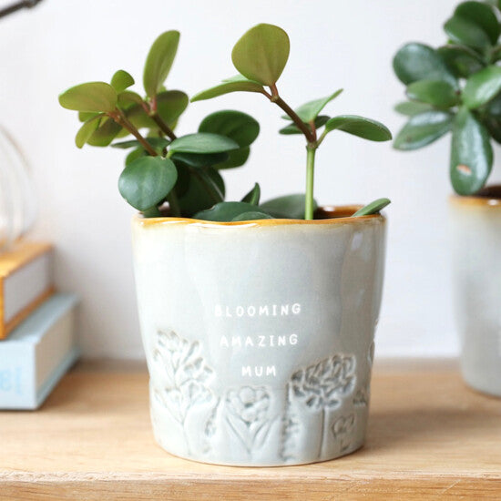 glazed ceramic ombre planter