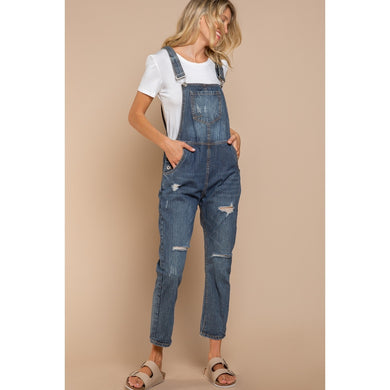 pin stripe vintage wash denim overalls
