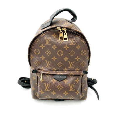 Louis Vuitton Palm Springs Monogram Brown Canvas Backpack