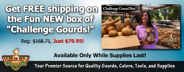 "June 17, 2020: FREE shipping on the HUGE ""Challenge Gourds"" box, plus amazing gourd art and more!"