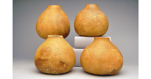 Bargain Quality Gourd Pots, Pre-Cut and Craft-Ready