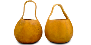 Bargain Quality Gourd Baskets, Pre-Cut and Craft-Ready
