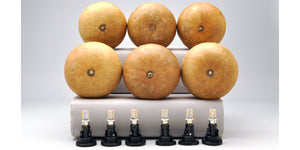 Canteen Gourd Lamp Kits