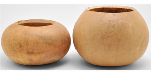 Gourd Bowls, Pre-Cut and Craft-Ready