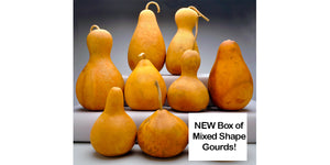 Learning Gourd Boxes