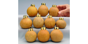 Craft-Ready Gourd Ornaments