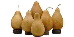 Bargain Boxed Gourds