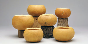 Bargain Quality, Pre-Cut, Craft-Ready Gourd Bowl Box