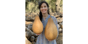 Pre-Boxed CLEAN Tall-Body Gourds