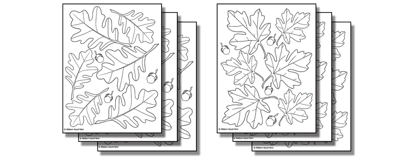 Stick 'n Burn Multiples: Large Leaves Pack