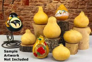 Fancy Hook Craft-Ready Gourd Ornaments