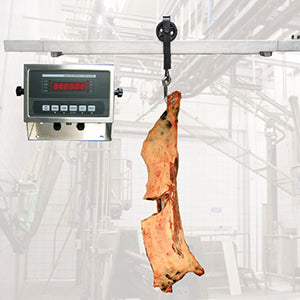 Carcass Weighing Rail Scale
