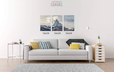 48x24 Canvas Split Canvas Newfoundland Canvas