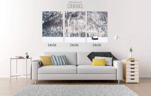 72x36 Canvas Split Canvas Newfoundland Canvas