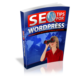 SEO Tips For Wordpress - Hobnob Store