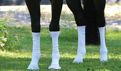 Silver Whinnys® by Sox for Horses - 1 Pair