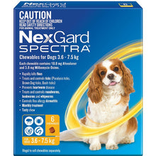 Nexgard Spectra 6 packs