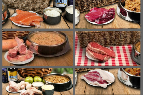 Somerford Raw & Natural - Adult Deluxe Combo Pack + FREE Meaty Bones