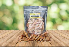 LIMITED GOURMET EDITION Somerford Naturals Australian King Prawns Dog or Cat Treats
