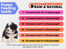 Somerford Raw & Natural - PICK a PROTEIN Baby Puppy Pack + FREE Meaty Bones
